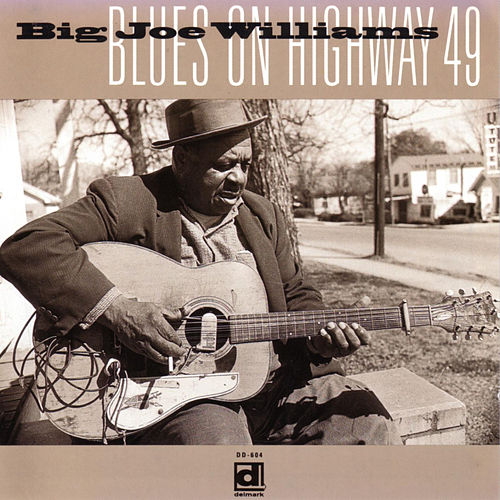 Blues on Highway 49 de Big Joe Williams