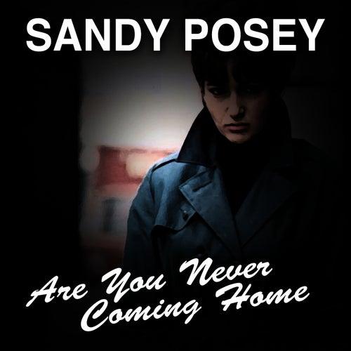 Are You Never Coming Home de Sandy Posey