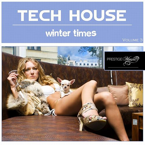 Tech-House Winter Times, Vol. 3 by Various Artists