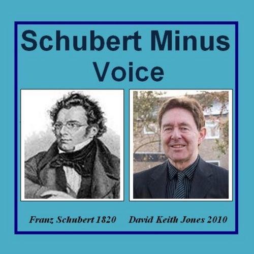 Schubert Minus Voice de David Keith Jones