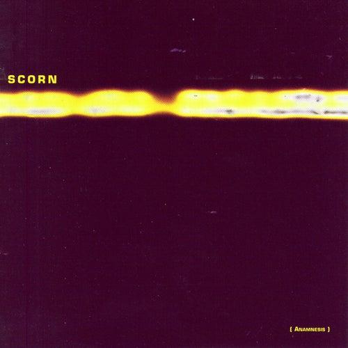 Anamnesis by Scorn