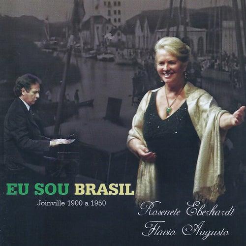 Eu Sou Brasil de Rosenete Eberhardt