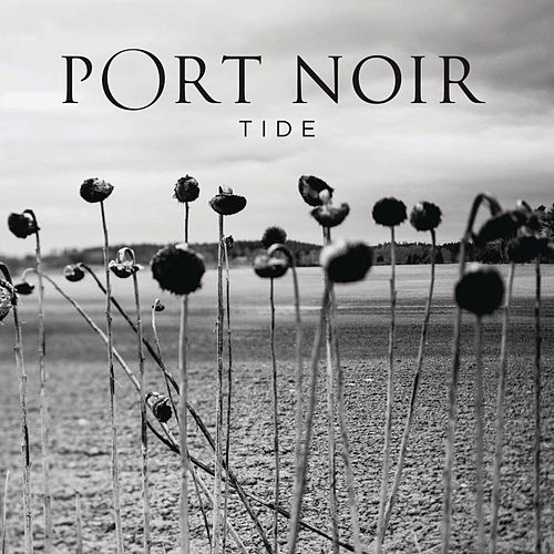Tide by Port Noir