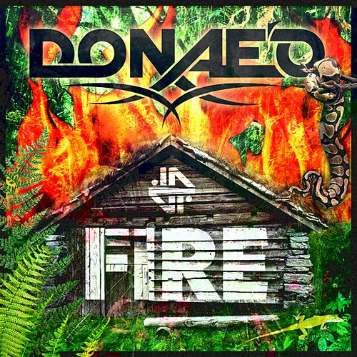 Fire by Donaeo