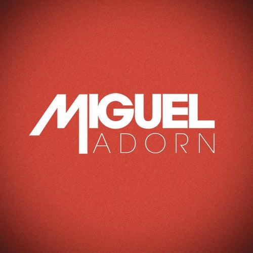 Adorn de Miguel