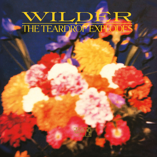 Wilder (Remastered Expanded Edition) by The Teardrop Explodes