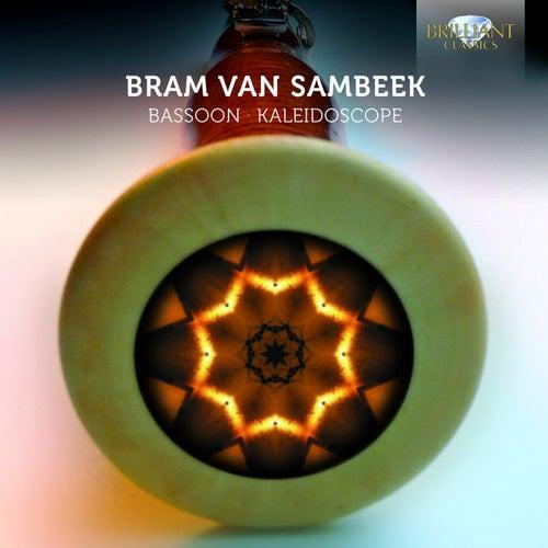 Bassoon Kaleidoscope de Various Artists