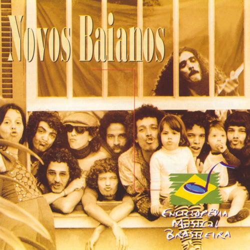 Enciclopédia Musical Brasileira de Novos Baianos