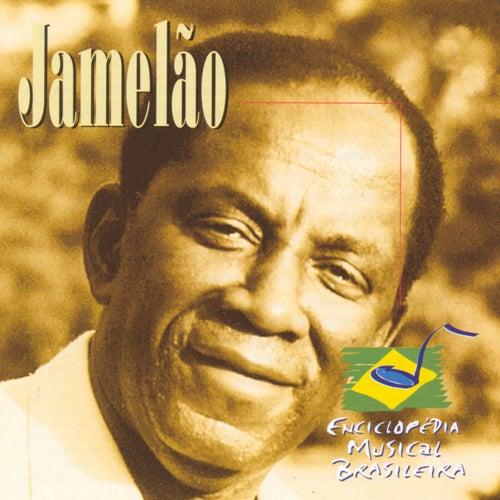 Enciclopédia Musical Brasileira by Jamelão