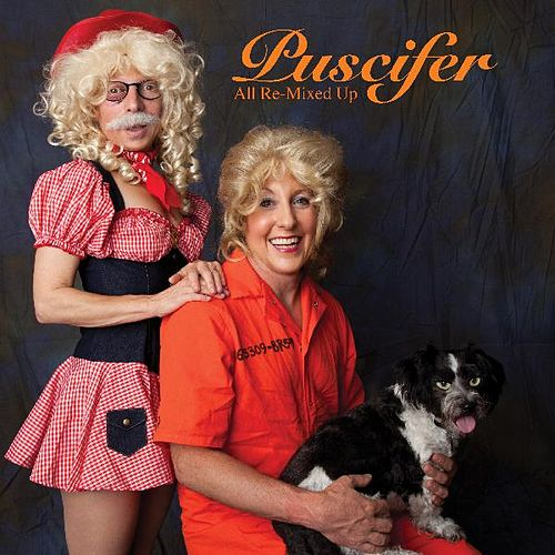 All Re-Mixed Up by Puscifer