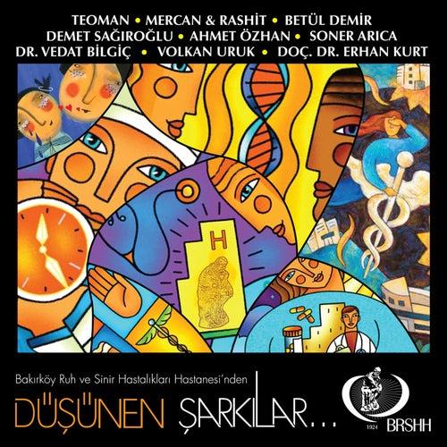 Düşünen Şarkılar von Various Artists