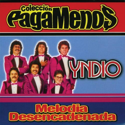 Melodia Desencadenada de Yndio
