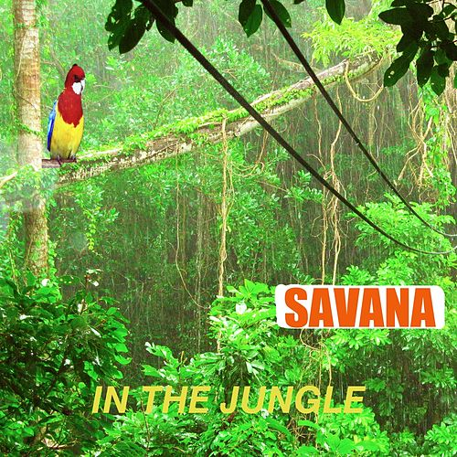Jungle (In the Jungle) by Savana