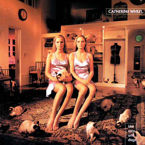 Like Cats & Dogs by Catherine Wheel