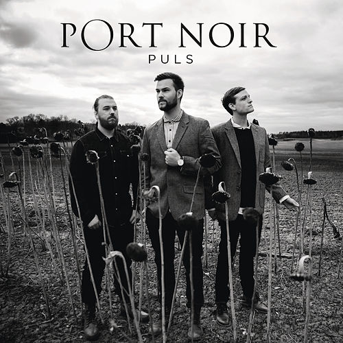 Puls by Port Noir