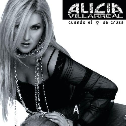 Cuando El Corazón Se Cruza by Alicia Villarreal