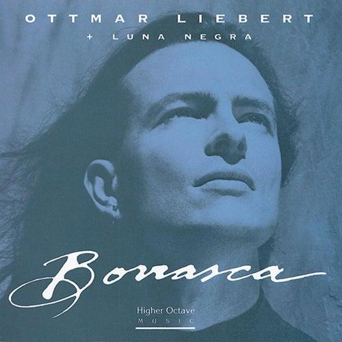 Borrasca de Ottmar Liebert