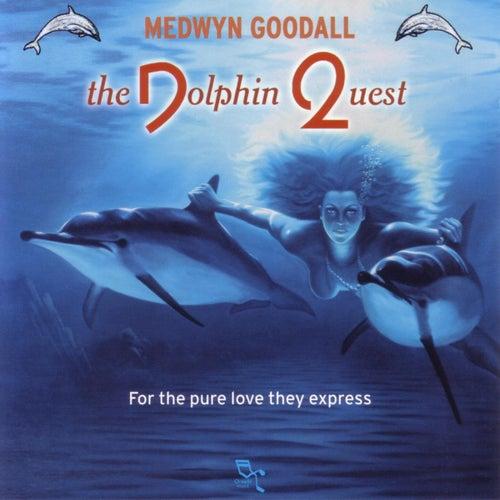 Dolphin Quest de Medwyn Goodall