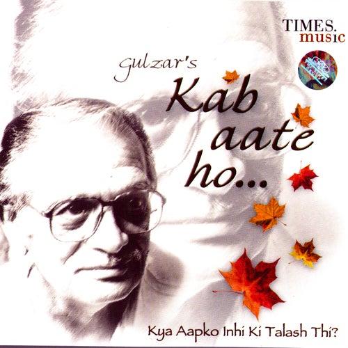Kab Aate Ho… Kya Aapko Inhi Ki Talash Thi? by Gulzar