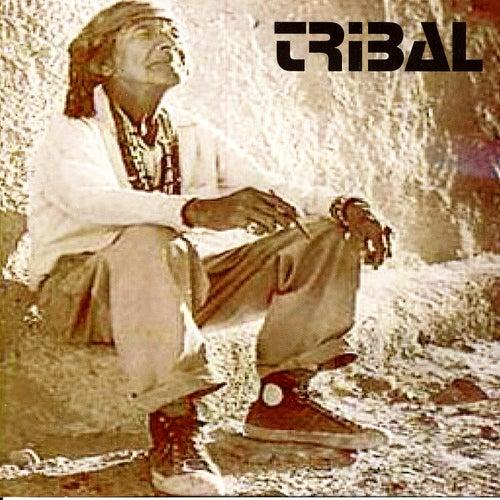 Tribal-Live in SA von Tribal