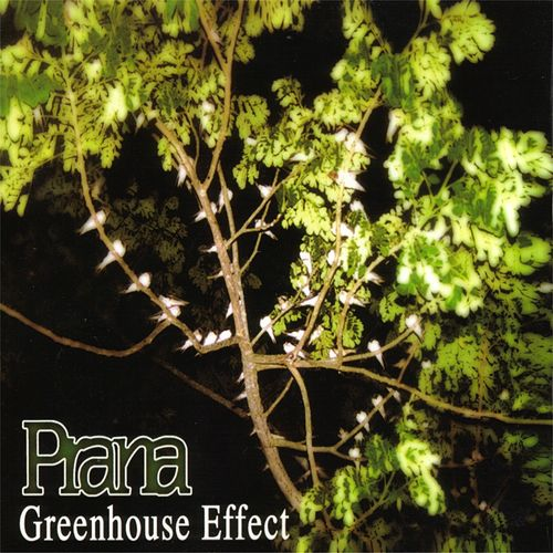 Greenhouse Effect by Prana