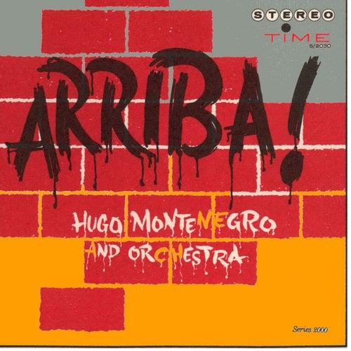 Arriba by Hugo Montenegro