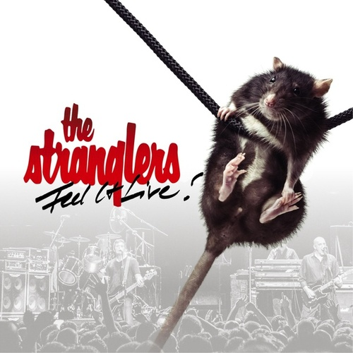 Feel It Live by The Stranglers