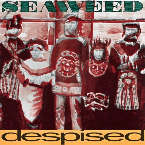 Despised by Seaweed