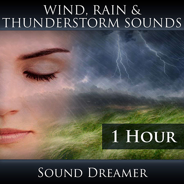 Wind Rain and Thunderstorm Sounds - 1 Hour by Sound Dreamer