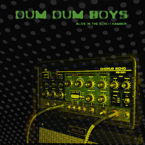 Alive in the Echo Chamber by Dumdum Boys
