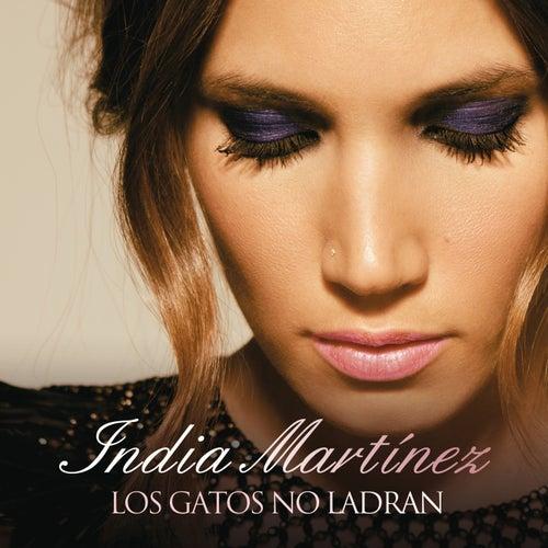 Los Gatos no Ladran von India Martinez