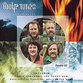 25th Anniversary by The Wolfe Tones