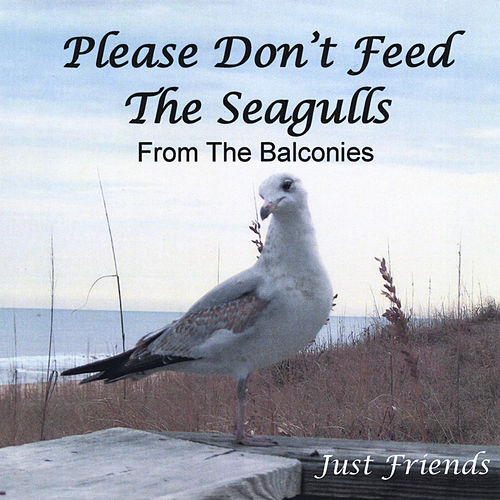 Please Don't Feed the Seagulls from the Balconies by Just Friends
