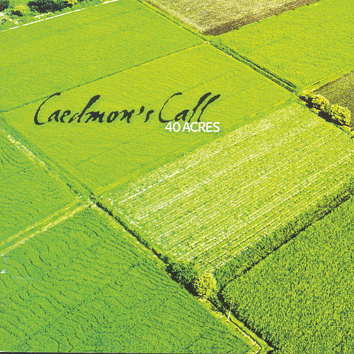 40 Acres de Caedmon's Call
