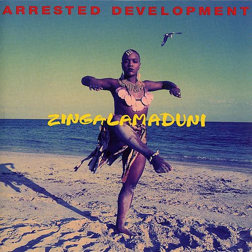 Zingalamaduni by Arrested Development