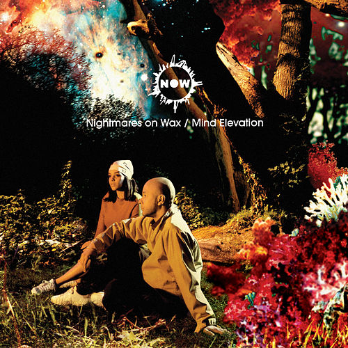 Mind Elevation de Nightmares on Wax