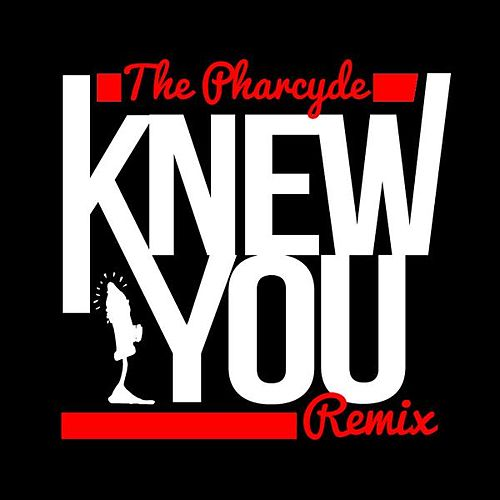 Knew You (Simeon Viltz Remix) de The Pharcyde