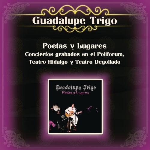 Poetas y Lugares Conciertos Grabados en el Polifórum, Teatro Hidalgo y Teatro Degollado de Guadalupe Trigo