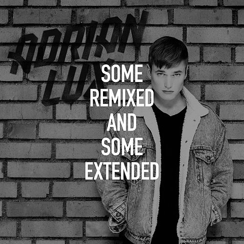 Some Remixed and Some Extended de Adrian Lux