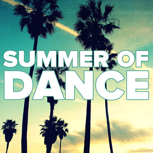Summer Of Dance 2013 von Various Artists