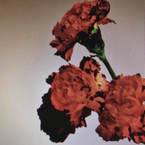 Made To Love (Remixes) de John Legend