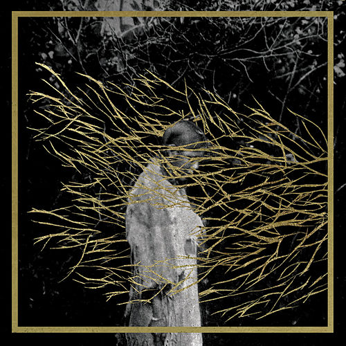 Engravings von Forest Swords