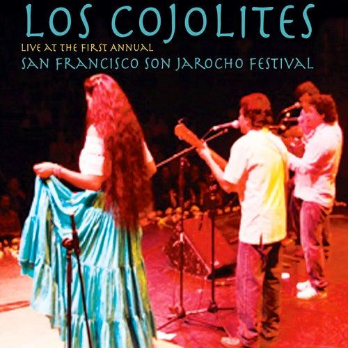 Live at the 1st Annual San Francisco Son Jarocho Festival de Los Cojolites