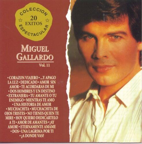 Coleccion Espectacular 20 Exitos Vol. 2 de Miguel Gallardo