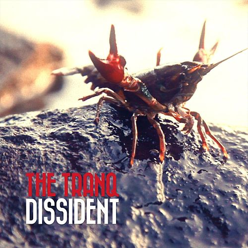 Dissident by The Tranq