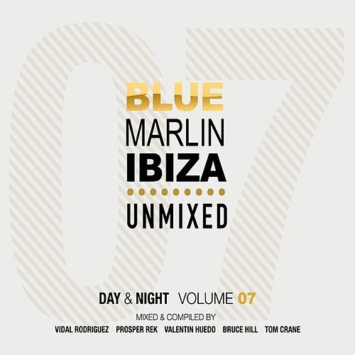 Blue Marlin Ibiza 2013 (Day & Night, Vol. 7 Unmixed Version) de Various Artists