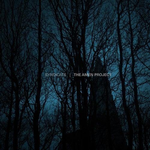 The Amen Project von Various Artists