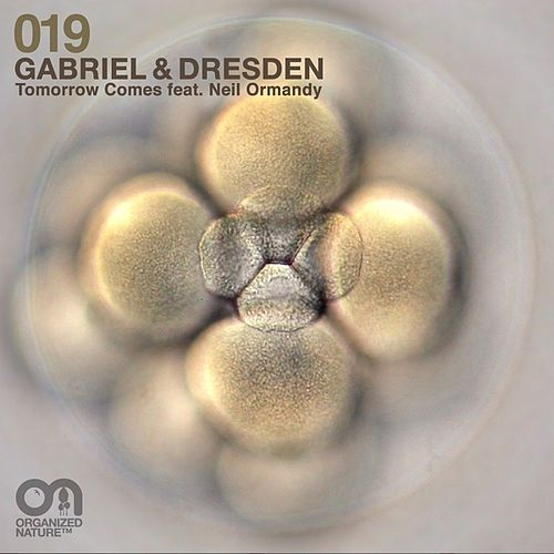 Tomorrow Comes de Gabriel & Dresden