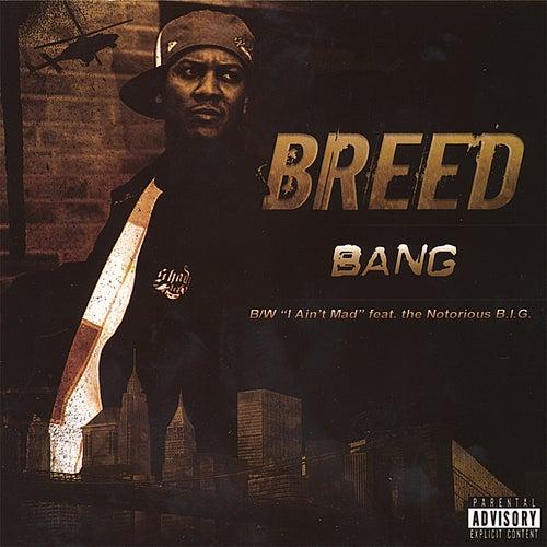 Bang von MC Breed