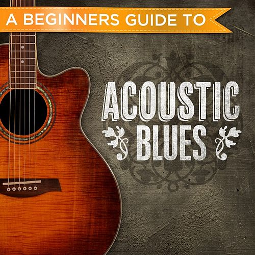 A Beginners Guide to: Acoustic Blues de Various Artists